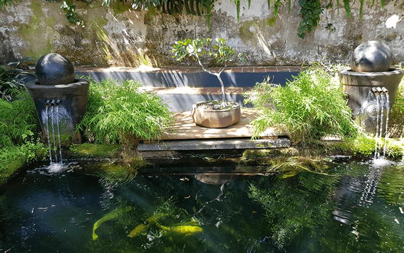 Westville centers Koy pond